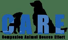 Bay Area Dog Rescue Care Companion Animal Rescue Effort